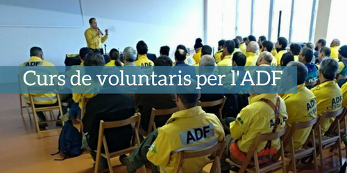 Curs voluntari ADF